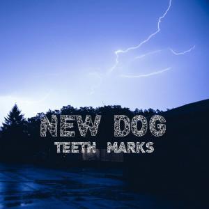 newdogteethmarks